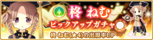 Banner 0212 m.png